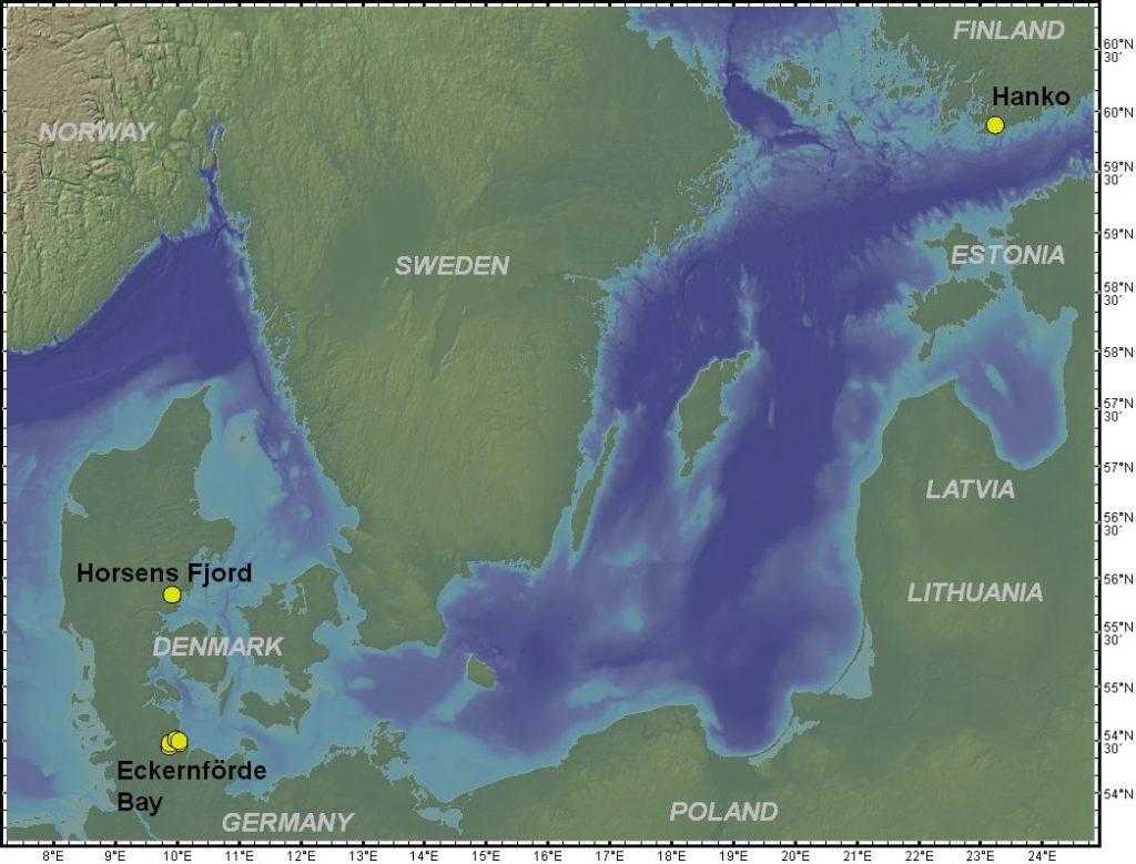 Seamount SGD sites